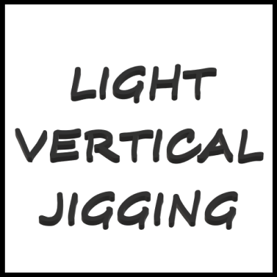 LIGHT VERTICAL JIGGING